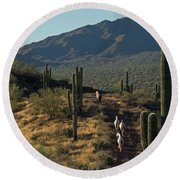 Wild Horses Of The Sonoran Desert Round Beach Towel by Sue Cullumber