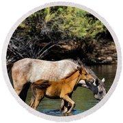 Wild Horses On The Salt River Round Beach Towel