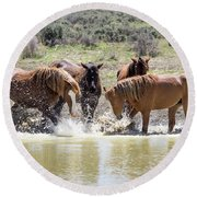 Wild Mustang Stallions Playing In The Water - Sand Wash Basin Round Beach Towel