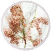 Wild Indian Rice In Autumn Round Beach Towel