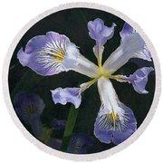 Wild Iris 2 Round Beach Towel