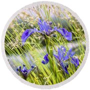 Wild Irises Round Beach Towel