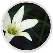 Round Beach Towel featuring the photograph Wild Lily by Carolyn Marshall