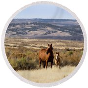 Wild Mare With Young Foal In Sand Wash Basin Round Beach Towel