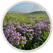 Wild Mints Galore In Glacial Park Round Beach Towel