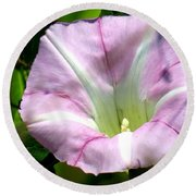 Wild Morning Glory Round Beach Towel