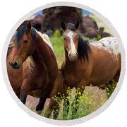 Wild Mustang Brothers Round Beach Towel