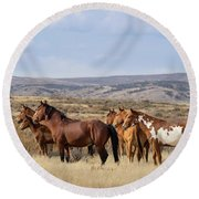 Wild Mustang Family Band In Sand Wash Basin Round Beach Towel