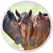 Wild Mustang Family Round Beach Towel