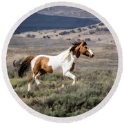 Wild Mustang Stallion On The Move In Sand Wash Basin Round Beach Towel
