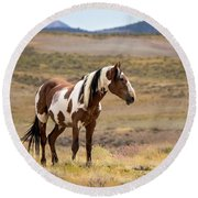 Wild Mustang Stallion Picasso Of Sand Wash Basin Round Beach Towel