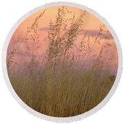 Round Beach Towel featuring the photograph Wild Oats by Linda Lees