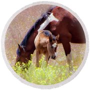 Wild Paint Horses Round Beach Towel
