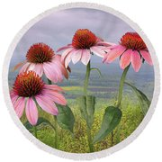 Wild Purple Coneflowers Round Beach Towel