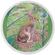 Wild Rabbit Round Beach Towel by Hilda and Jose Garrancho