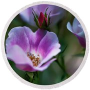 Wild Rose 7 Round Beach Towel