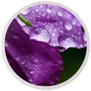 Round Beach Towel featuring the photograph Wild Rose Droplet by Darcy Michaelchuk