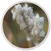 Round Beach Towel featuring the photograph Wild Seed by Ann E Robson