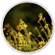 Round Beach Towel featuring the photograph Wild Spring Flowers by Kelly Wade