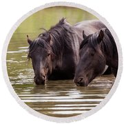 Wild Stallions At The Water Hole Round Beach Towel