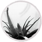 Wild Succulent-  By Linda Woods Round Beach Towel by Linda Woods