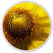 Wild Sunflower Up Close Round Beach Towel