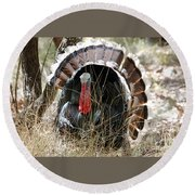 Wild Turkey Round Beach Towel