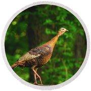 Wild Turkey Profile On Rooftop Round Beach Towel