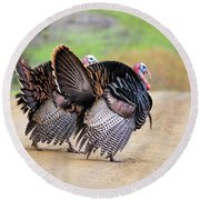 Wild Turkeys Round Beach Towel