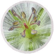 Round Beach Towel featuring the photograph Wild White Geranium  by Ann E Robson