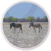 Round Beach Towel featuring the photograph Wild Zebra Panoramic by Ernie Echols