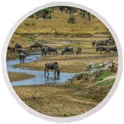 Wildebeest In The Tarangire Round Beach Towel