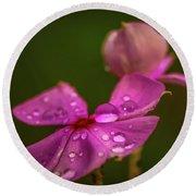 Wildflower Dew Drops Round Beach Towel by Tom Claud
