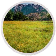 Wildflower Field In The Wichita Mountains Round Beach Towel by Tamyra Ayles