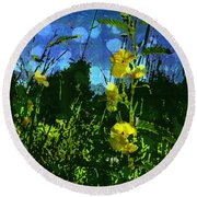 Round Beach Towel featuring the photograph Wildflower Field by Shawna Rowe
