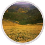 Wildflower Field Up In The Temblor Range At Carrizo Plain National Monument Round Beach Towel