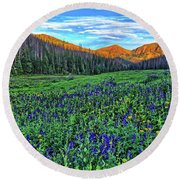 Round Beach Towel featuring the photograph Wildflower Park by Scott Mahon
