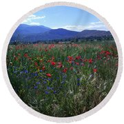 Wildflower Path Round Beach Towel by Judy Kirouac