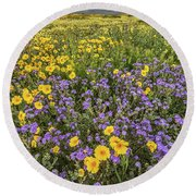 Round Beach Towel featuring the photograph Wildflower Super Bloom by Peter Tellone