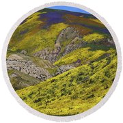 Wildflowers Galore At Carrizo Plain National Monument In California Round Beach Towel
