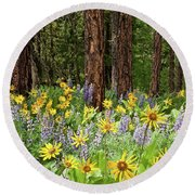 Balsamroot And Lupine In A Ponderosa Pine Forest Round Beach Towel
