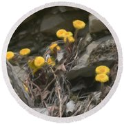 Wildflowers In Rocks Round Beach Towel
