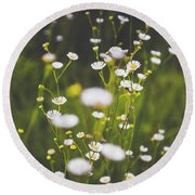 Round Beach Towel featuring the photograph Wildflowers In Summer by Shelby Young