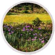 Wildflowers Of The Wichita Mountains Round Beach Towel