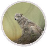 Wildlife Alaska Round Beach Towel
