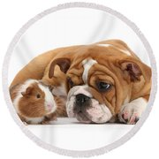 Will You Be My Friend? Round Beach Towel