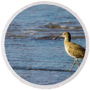 Willet 2 Round Beach Towel