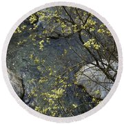 Round Beach Towel featuring the photograph Willow Blossom by Phil Banks