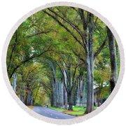 Willow Oak Trees Round Beach Towel