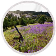 Willow Springs Station Round Beach Towel